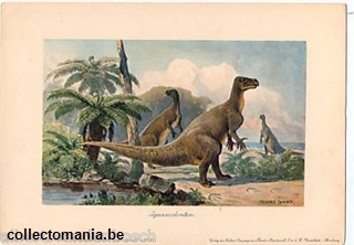 Chromo Trade Card iguanodont